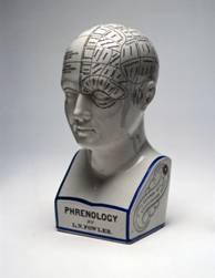 Frenoloģija jeb ko par tevi stāsta tavs galvaskauss?